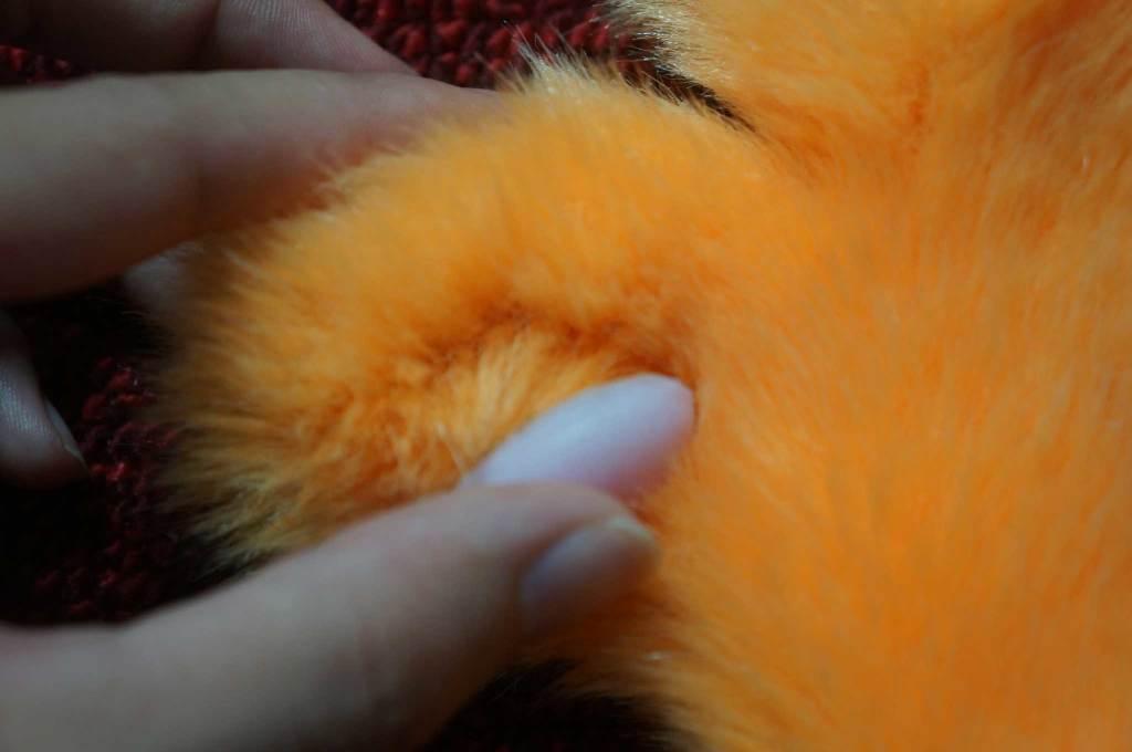 其實有正確的黏貼上去了。但是毛毛有毛毛的長度,所以導致肉球「ㄉㄨㄞ、ㄉㄨㄞ 」的亂跑
